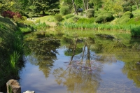Emmanuelle robert , jardin zen drom