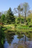 Emmanuelle robert , jardin zen