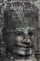 emmanuelle robert cambodge
