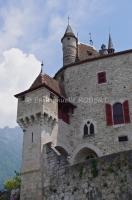 Menton saint Bernard, Haute Savoie