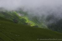 Puy de Sancy, Volcan d