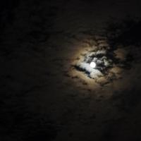 emmanuelle robert moon