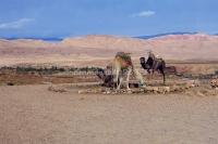 emmanuelle robert maroc 2011